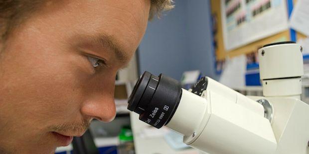 comment rep u00e9rer un bon cursus en biotechnologie